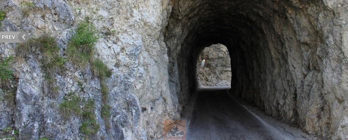 Monterovere