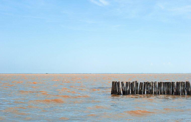 Lungo il delta del Po