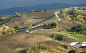 Strade bianche in Romagna